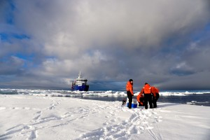 Sikuliaq researchers on ice