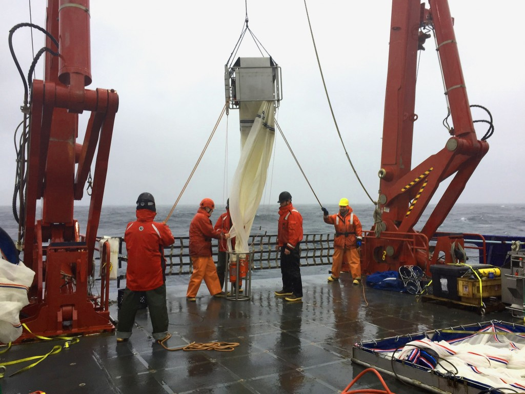 deploying net off Sikuliaq